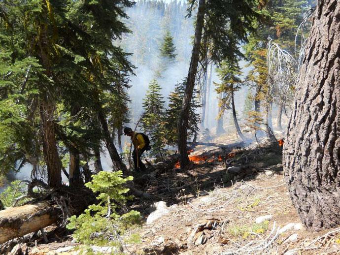Cascade Fire Yosemite National Park 2012 002