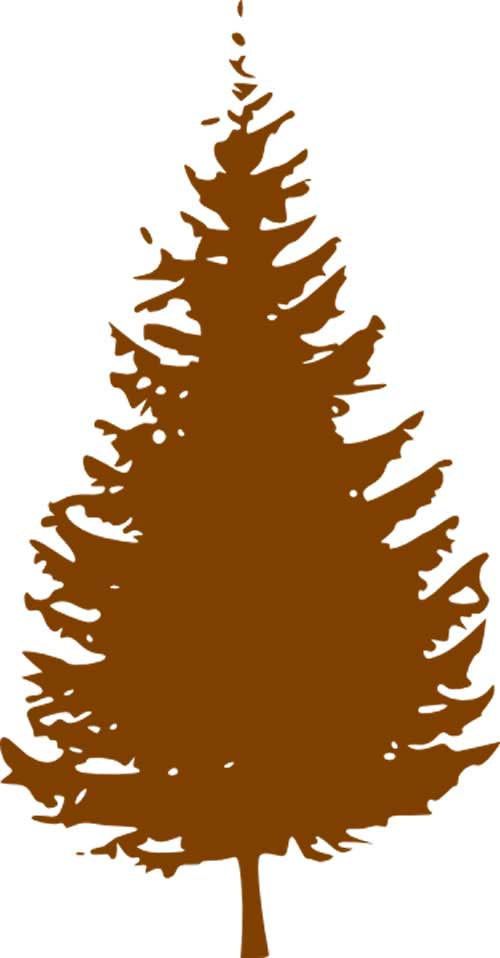 2015-brown-pine-tree