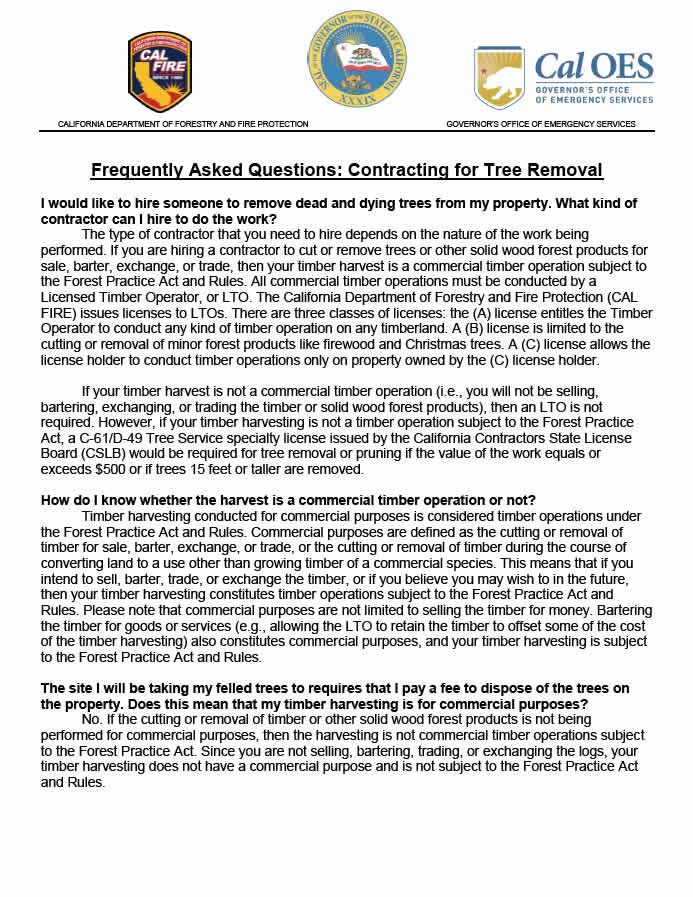Frequently-Asked-Questions-Contracting-for-Tree-Removal